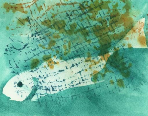 Akvarel Skrei X