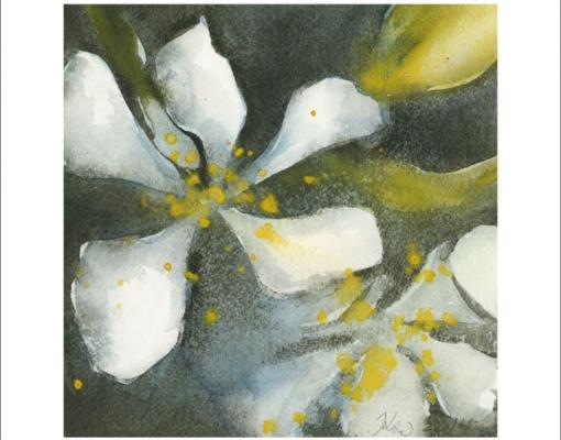 "Kunstkort kvadratisk Prunus domestica ""Victoria"""