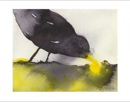 Kunstkort A6 Turdus merula