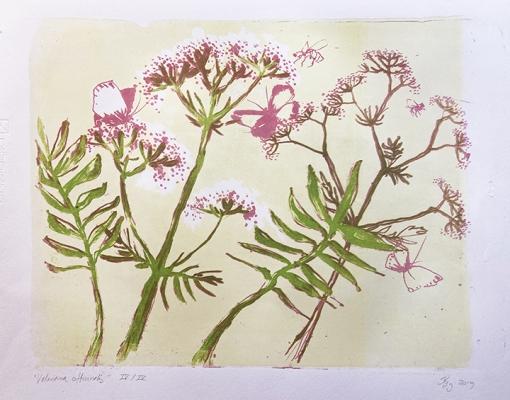 "Lithografisk tryk ""Valeriana Officinalis"""